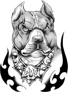 classic urban pit bull temporary tattoo. Black Bedroom Furniture Sets. Home Design Ideas